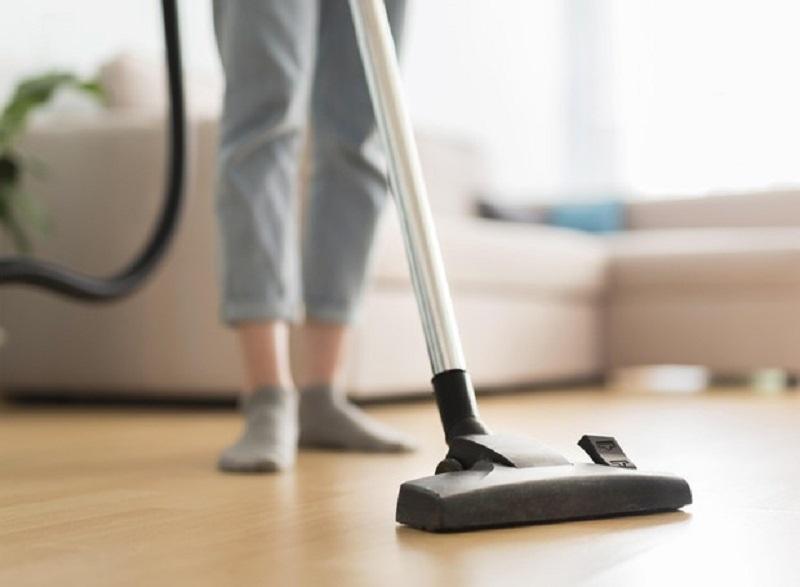 Saiba como eliminar traças e evitar infestações em casa